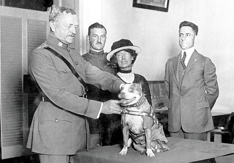 Генерал Джон Першинг награждает Стабби медалью