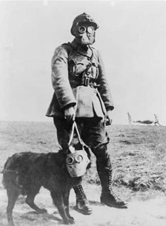 Сержант Стабби в своем противогазе