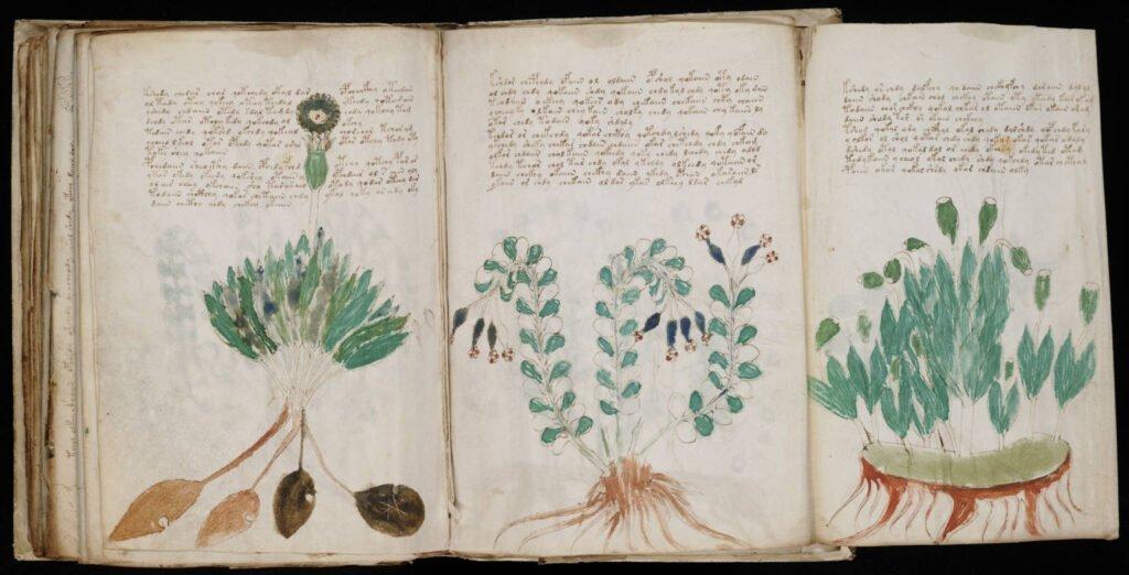 Загадочный манускрипт из собрания Рудольфа II